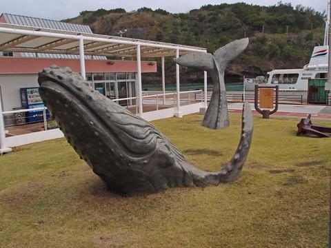 沖港110405(母島)P4051120.jpg